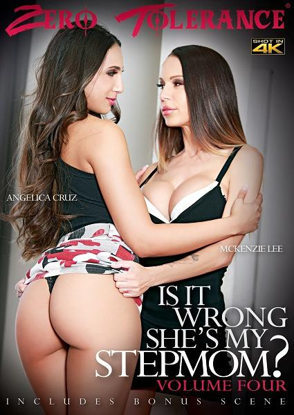 Is It Wrong She's My Stepmom? Volume 4 Box Cover