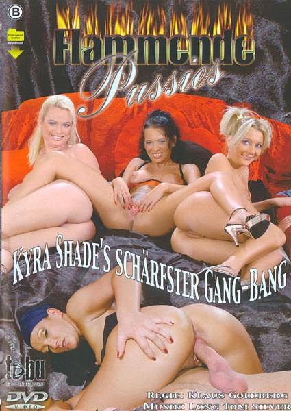 Flammende Pussies Box Cover