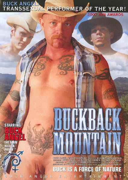 Buckback Mountain Box Cover