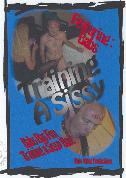 Training A Sissy Box Cover